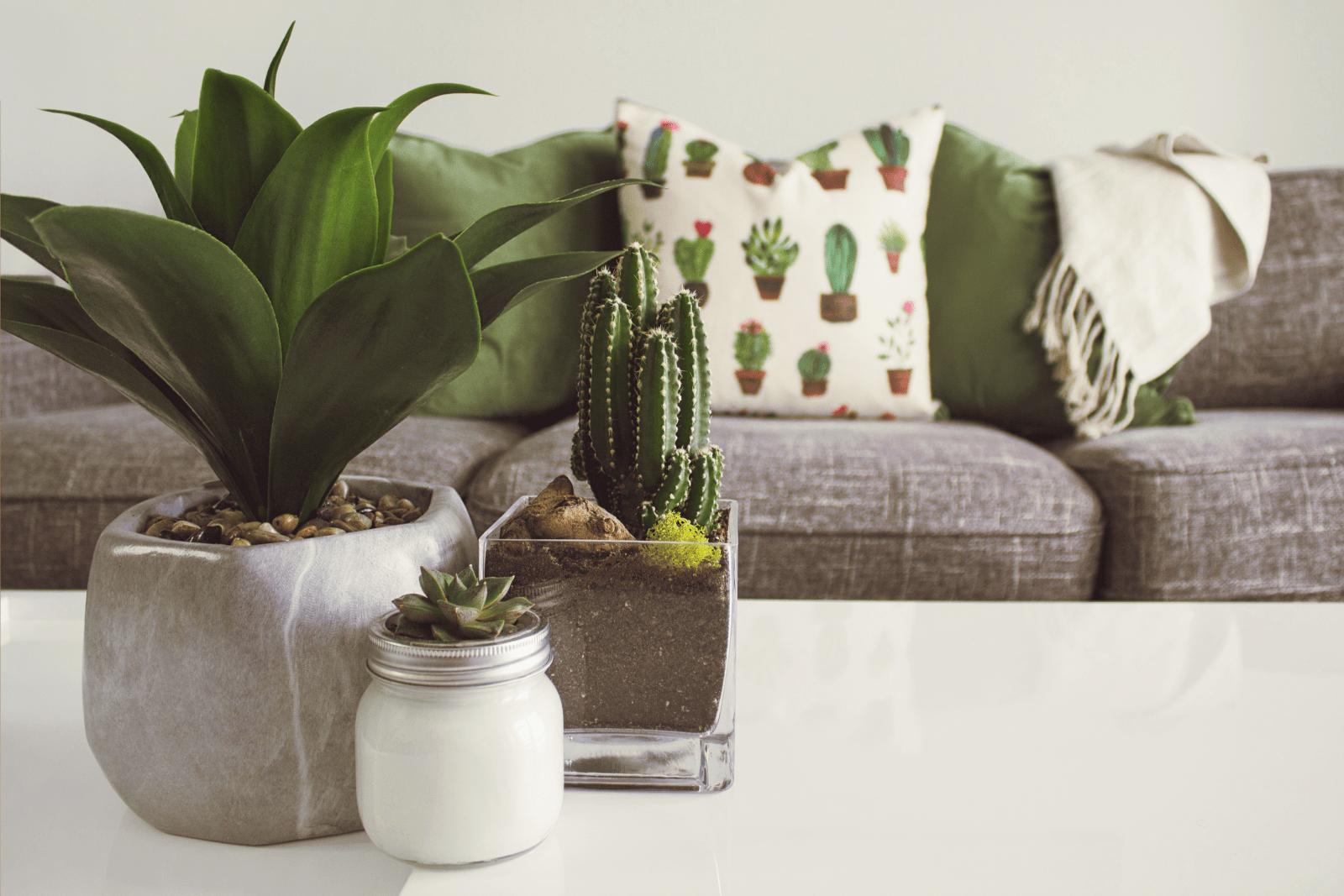 Decorador online almofadas coloridas- varanda
